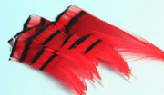 Перья фазана шейные Veniard Golden Pheasant Tippets Large Dyed Red